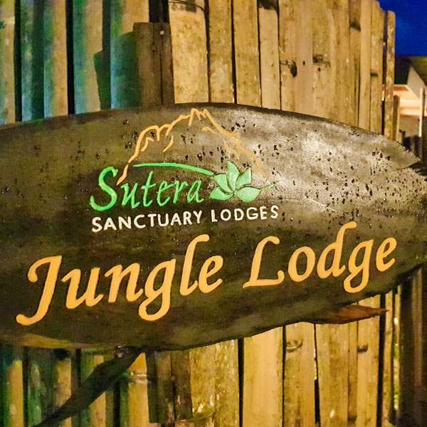 PHS_JungleLodge2